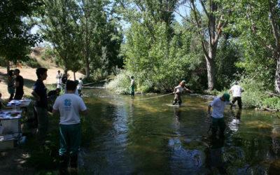 Participación ciudadana y voluntariado para frenar el cambio climático
